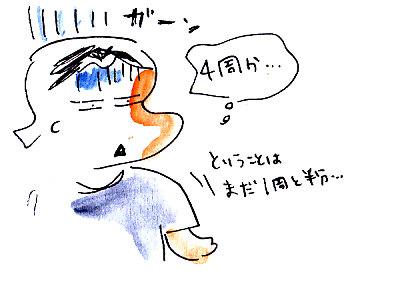 IMG_0012_2013111215514587b.jpg