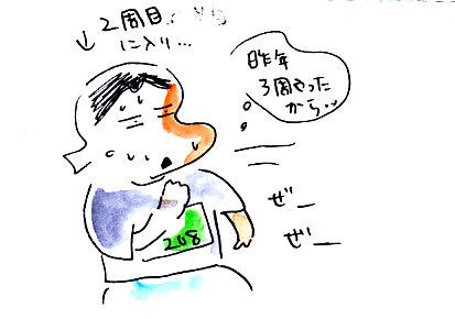 IMG_0013_20131112155146607.jpg