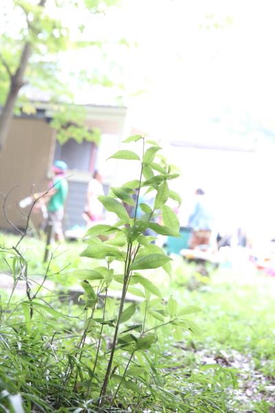 jointcamp2013_500.jpg