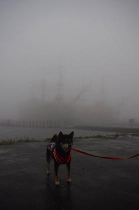 芦ノ湖だよ
