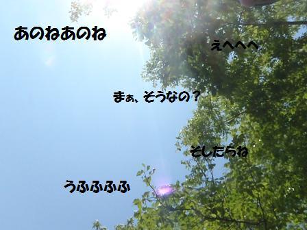 Bコピー ~ 08MAY13 024k