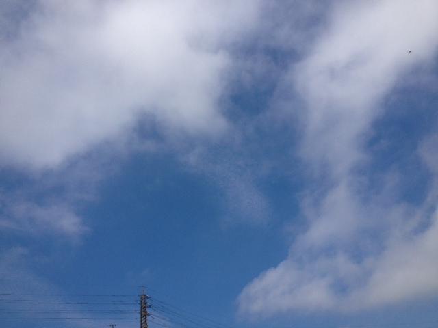 写真 mos1