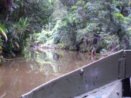 濠太剌利(オーストラリア)研修旅行記その2 先住民の生活と熱帯林へ進む