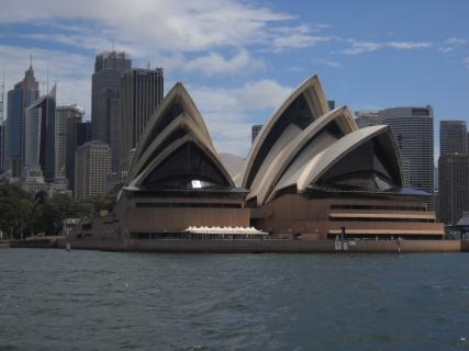 濠太剌利(オーストラリア)研修旅行記その6 マンリーを満喫そして・・・