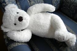 白熊★250