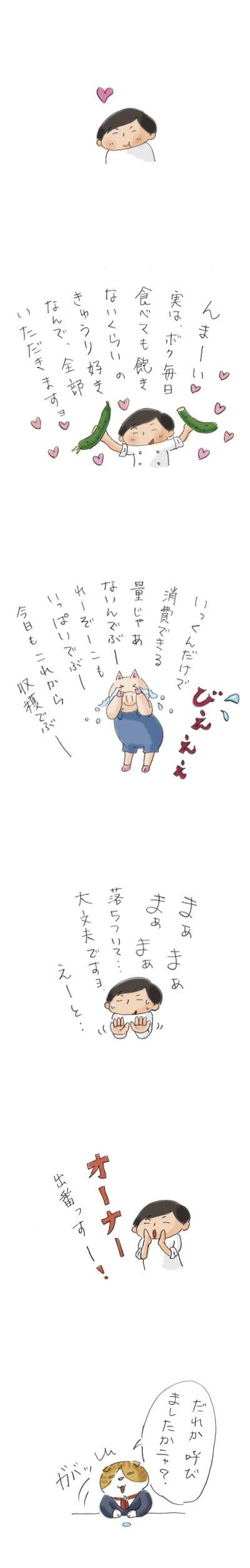 ぶーさんの夏野菜3