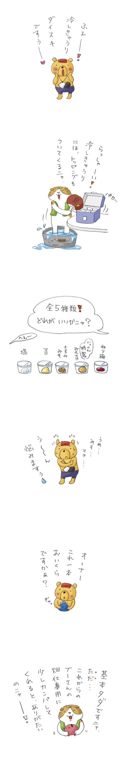 ぶーさんの夏野菜5