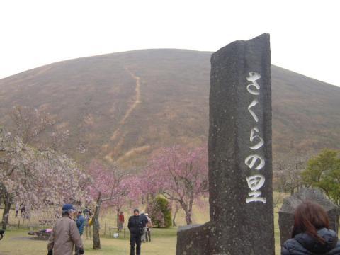DSCN0192    桜の里
