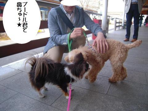 DSCN0028   軽井沢アウト