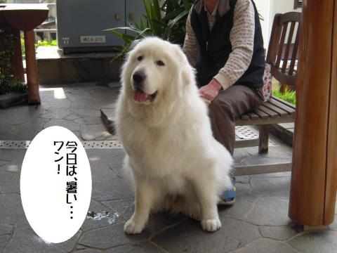 DSCN9896  永岡