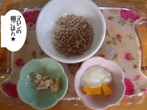 DSCN9968  朝食
