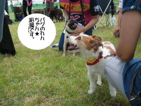 DSCN9901  四宮