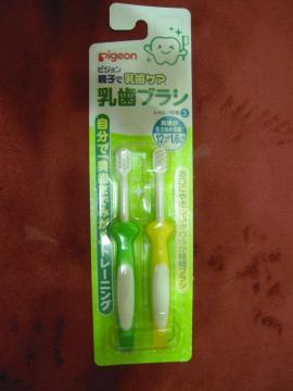 DSCN9873 歯ブラシ