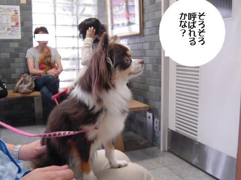 DSCN9892 永岡720