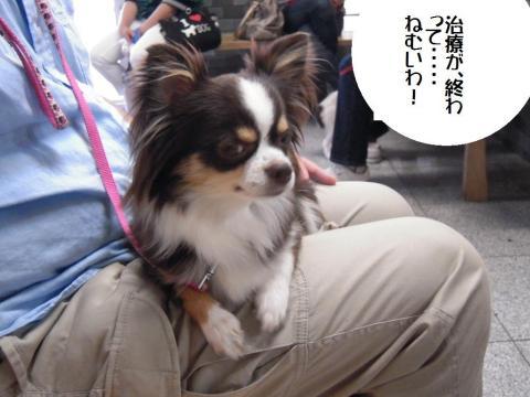 DSCN9889 永岡720