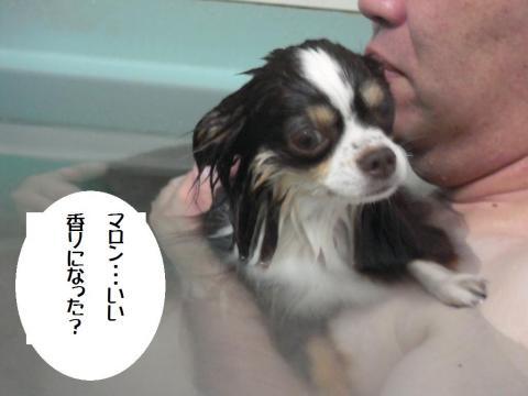 DSCN9987 お風呂8