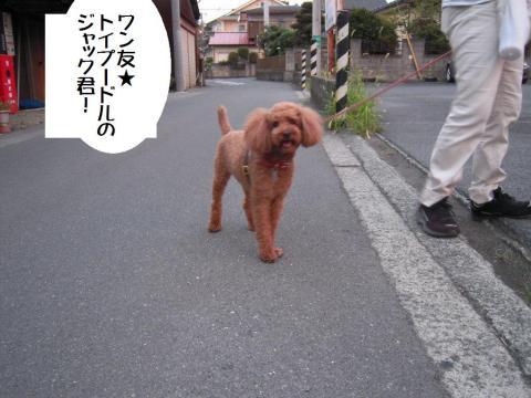 DSCN9993 ワン友J