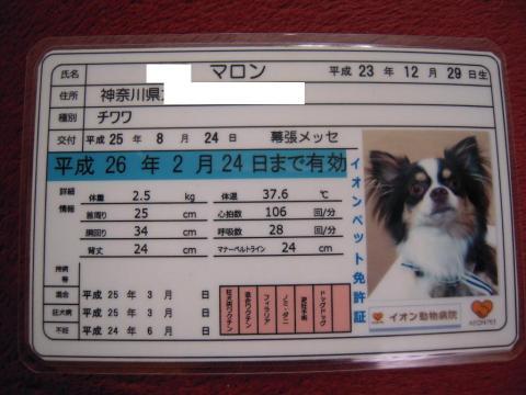 DSCN0020 幕張