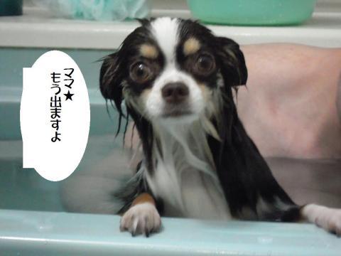 DSCN9936 お風呂