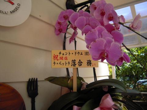 DSCN0057 軽井沢P