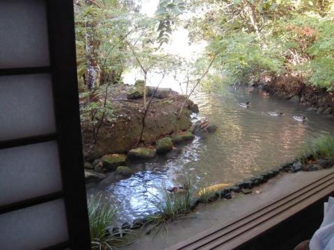 DSCN9881 加茂荘
