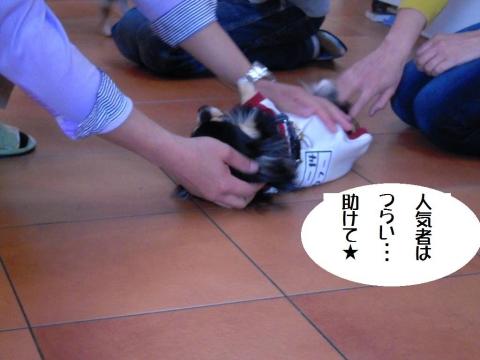 DSCN0081 ハッピー