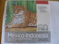 メキシコC20135-2