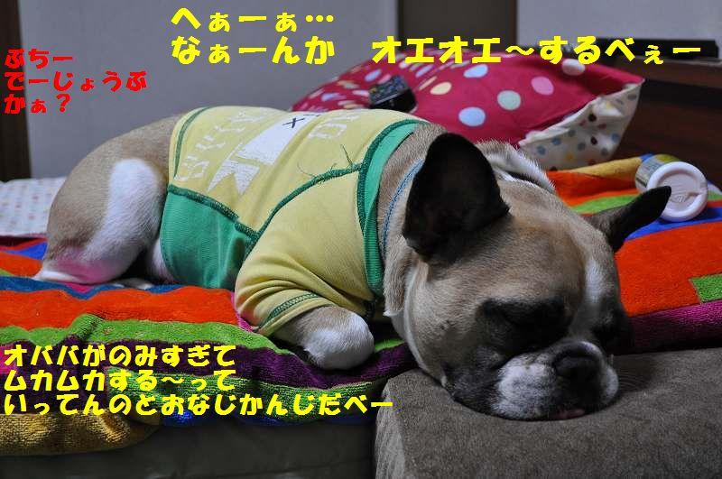 001_20131028141146a8c.jpg