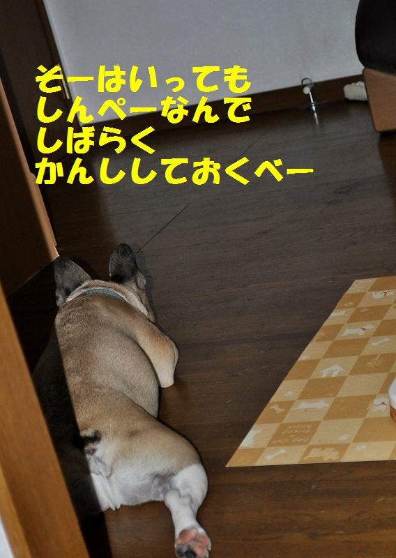 020_20130917160143cd6.jpg