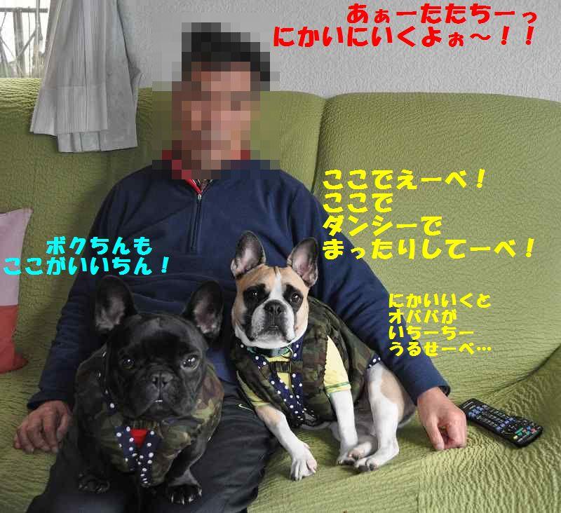 031_20131209104953f02.jpg