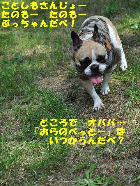 040_20130923094127cea.jpg