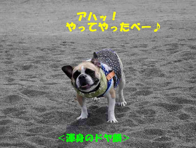 060_2013100213391519a.jpg