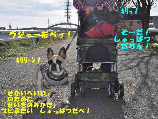 071_201312041546080f8.jpg