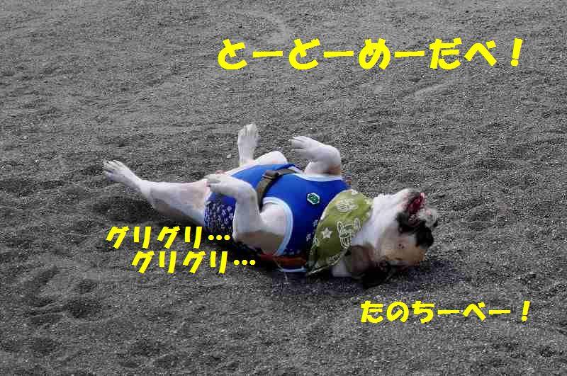 095_20131002134006d96.jpg