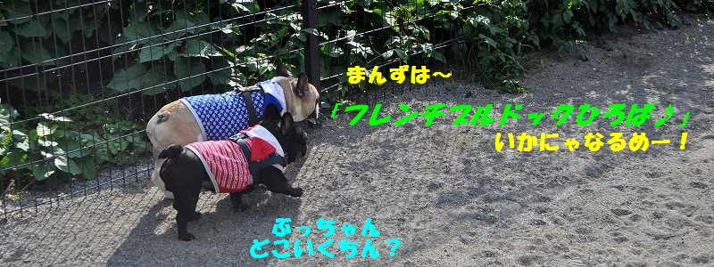 114_2013100110080742e.jpg