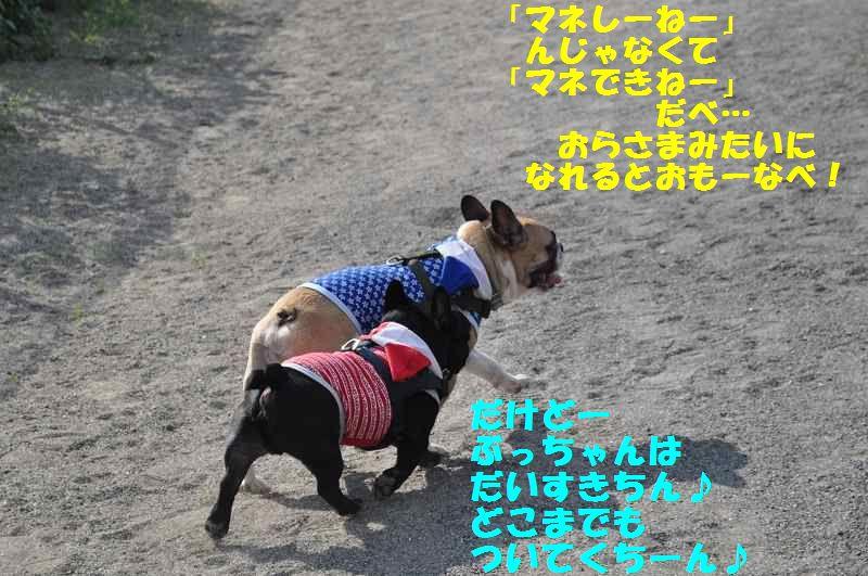 116_20131002091036633.jpg