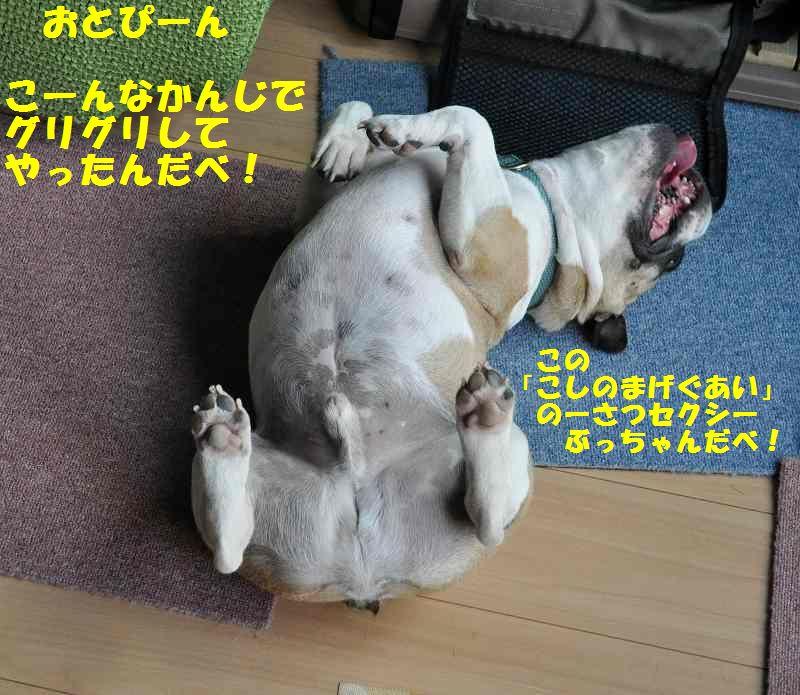 120_2013100213411352d.jpg