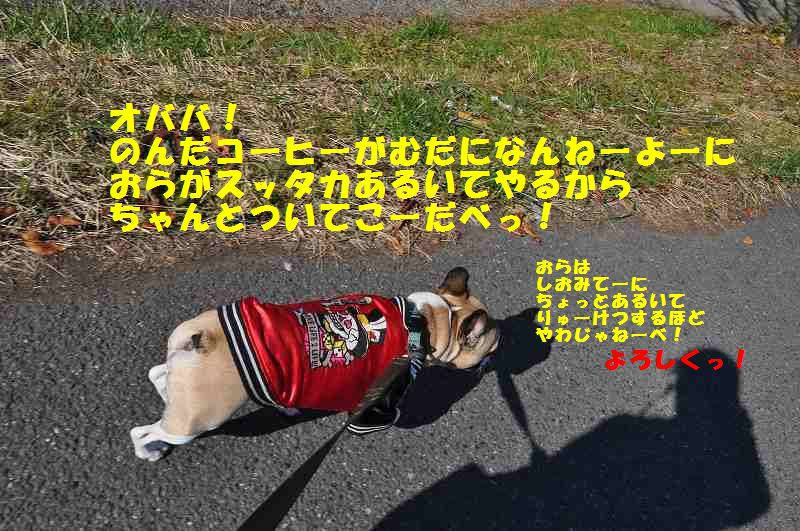 132_20131128132308737.jpg