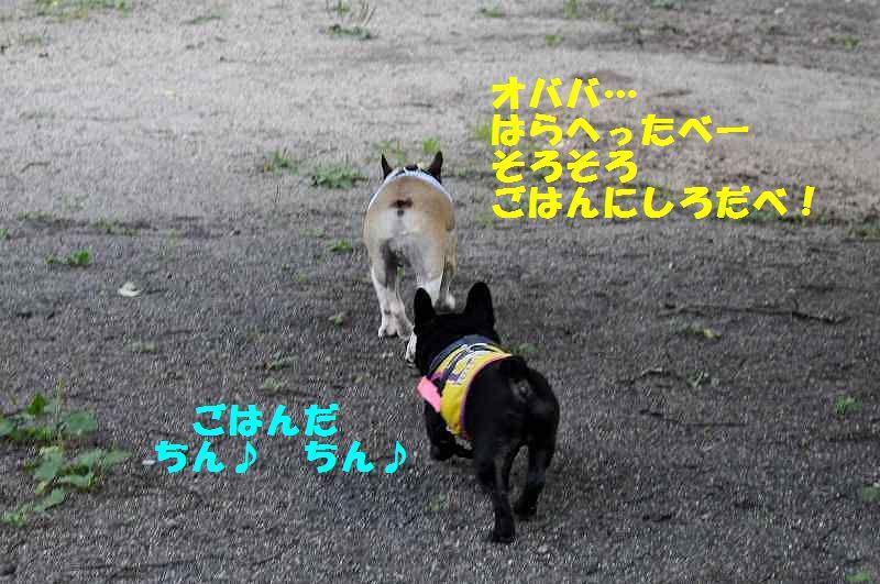 139_20130911141730a12.jpg