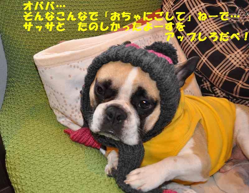 148_201310211053094f6.jpg