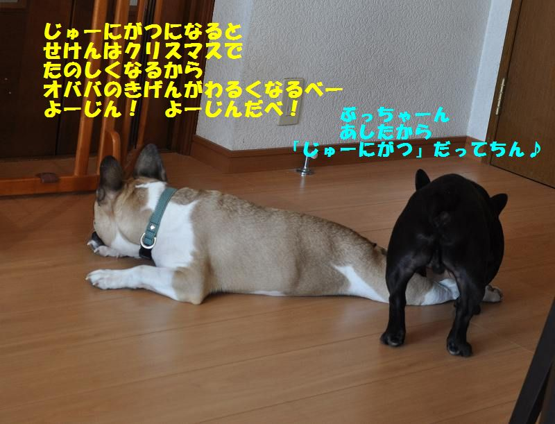 148_201311301002583a6.jpg