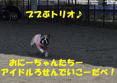 f9557db86dc33921818a-L[1]