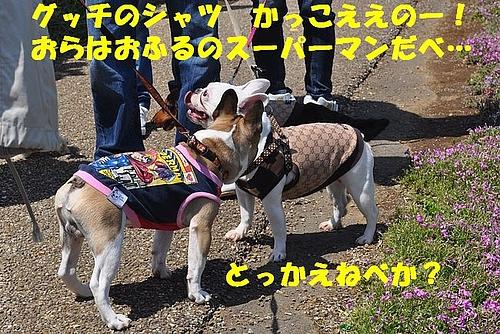 deeebf7979fb0b38a355-L[1]