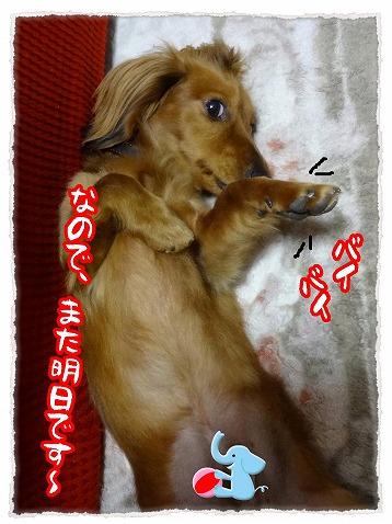 2013_3_31_1(修整1)
