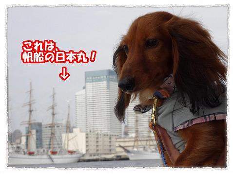 2013_10_11_6.jpg