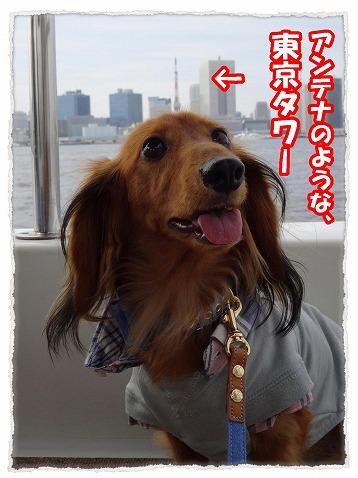 2013_10_11_7.jpg