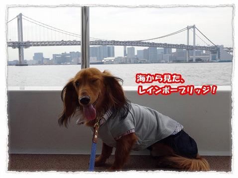 2013_10_11_9.jpg