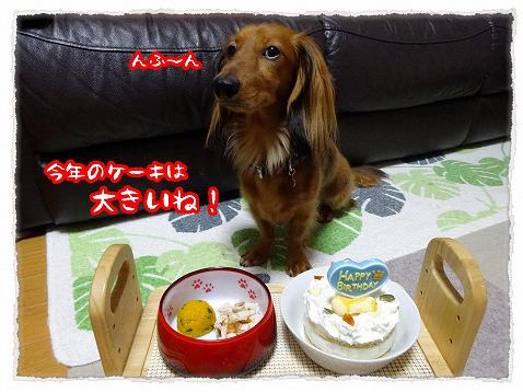 2013_10_15_1.jpg
