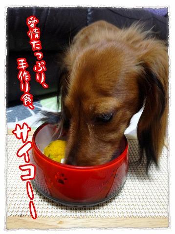 2013_10_15_2.jpg