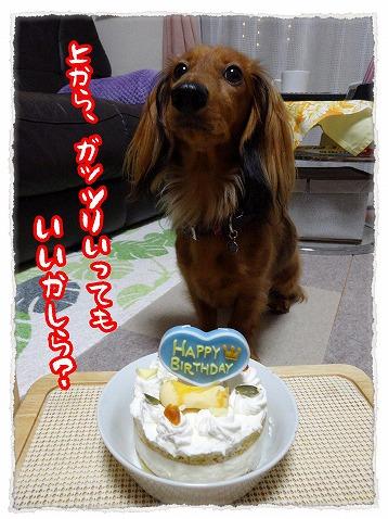 2013_10_15_3.jpg